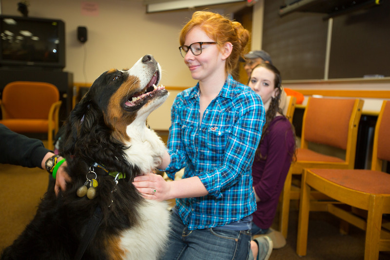 Student and therapy dog
